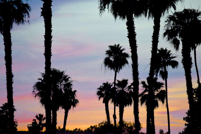 1. Palm Desert Vacation