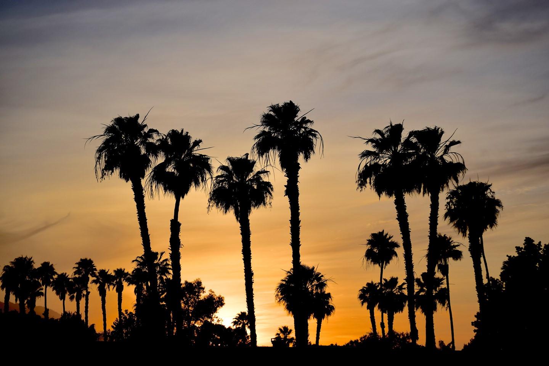 15. Palm Desert Vacation